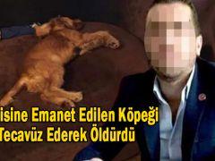 Kendisine Emanet Edilen Köpeği Tecavüz Ederek Öldürdü