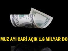 TEMMUZ AYI CARİ AÇIK 1.8 MİLYAR DOLAR