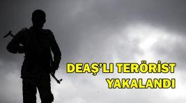 DEAŞ'lı TERÖRİST YAKALANDI