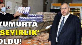 YUMURTA 'SEYİRLİK' OLDU