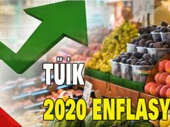 2020 ENFLASYON ORANI