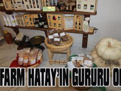 TEOFARM HATAY'IN GURURU OLDU