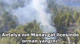ANTALYA'NIN BİTMEYEN KÂBUSU!
